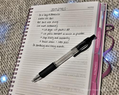 planning_goals_2019