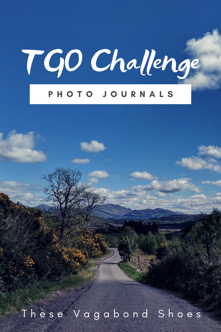 pin_tgo_challenge_2019_1