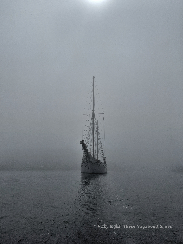 irene_fog_1_small