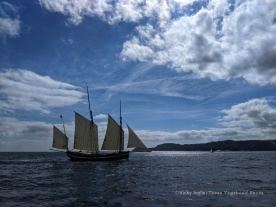 Lugger Greyhound, the fastest of the UK classic sailing fleet
