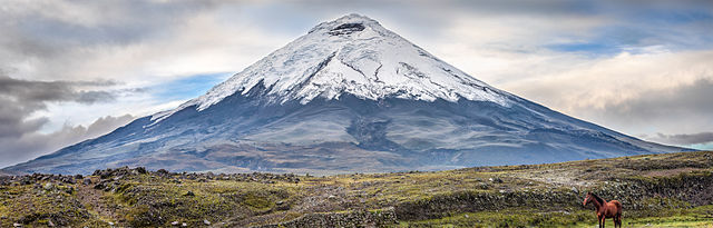 640px-Cotopaxi_with_horse.jpg