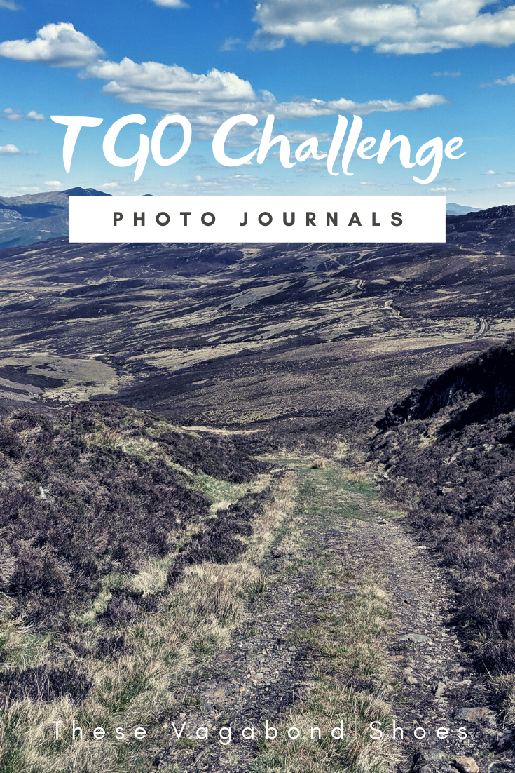 pin_tgo_challenge_2019_3