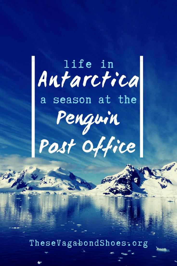pin_life_in_antarctica_1