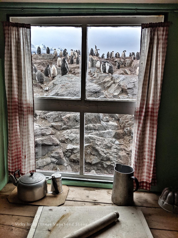 PL1920_museum_window_1.1