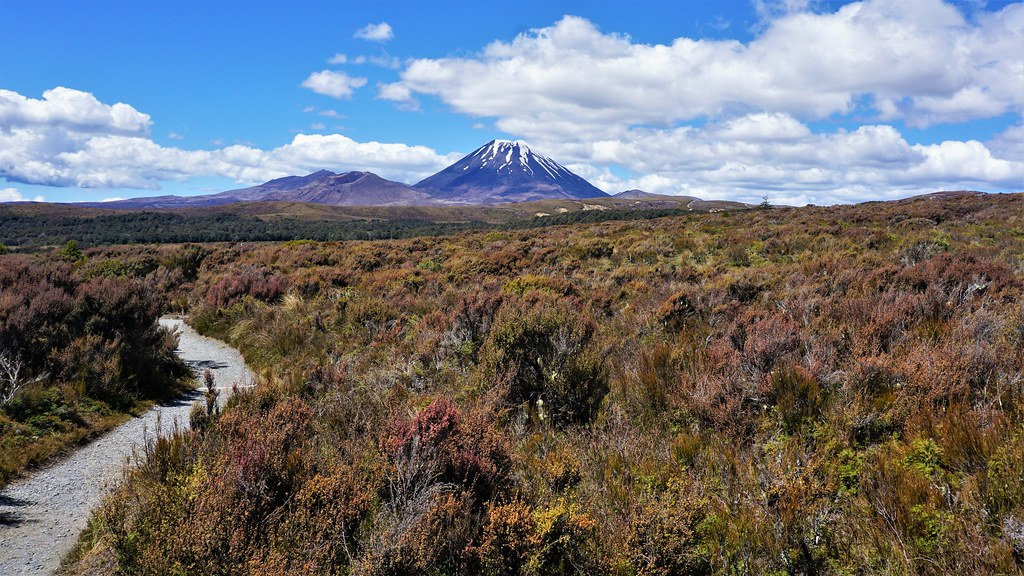 nz_tongariro_circuit