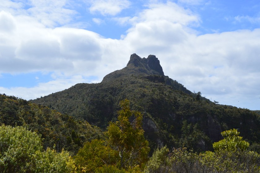 nz_pinnacles_trail